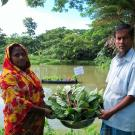 Man and woman hold basket of leafy green vegetables in front of pond with floating garden in Bangladesh